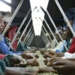 Business supply chain strategies are evolving, can poor countries benefit?